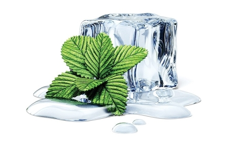 shutterstock_ice-cube-with-mint-isolated.jpg
